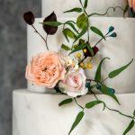 Coral David Austin, tea rose and wild berries