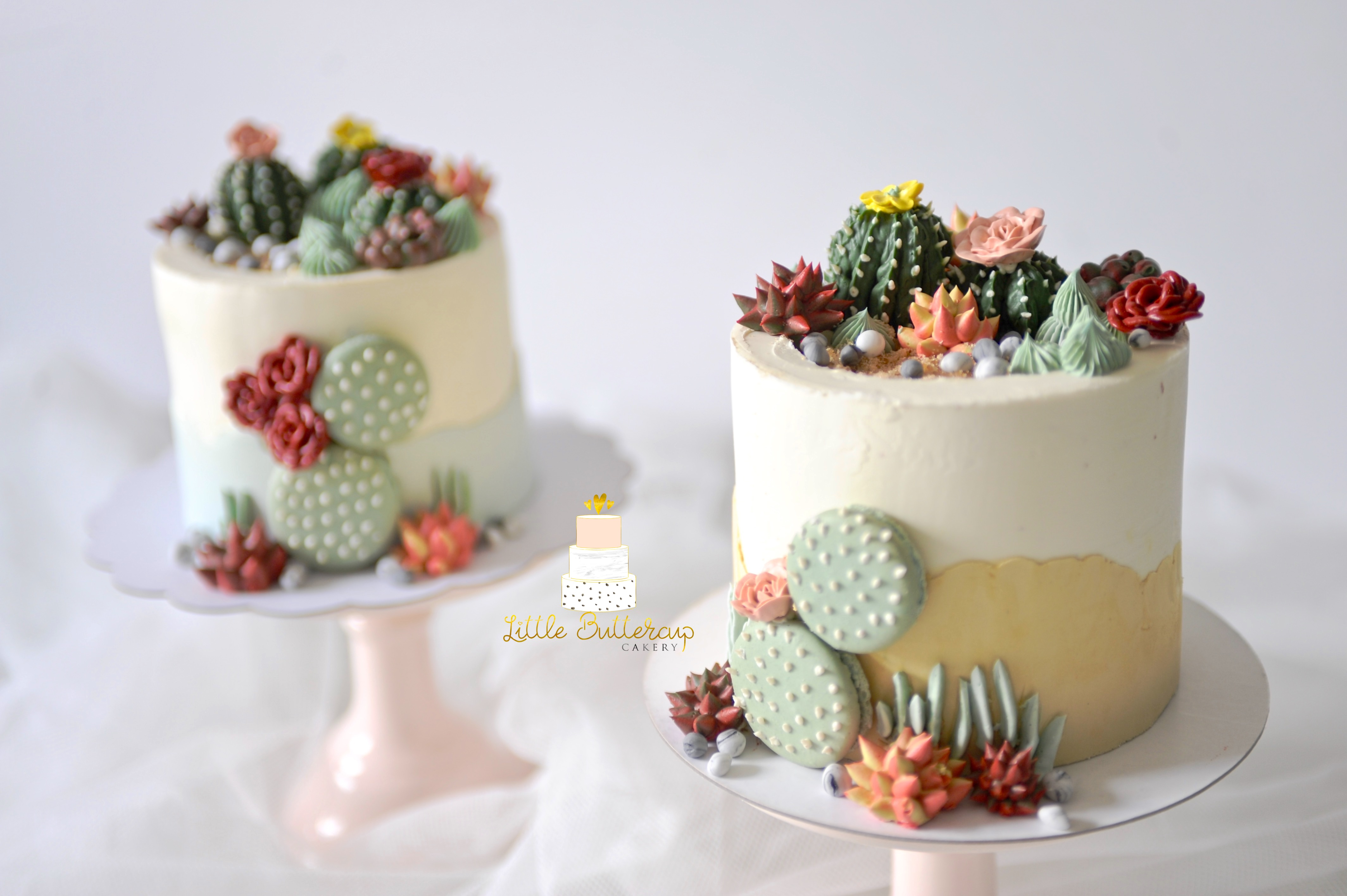 Buttercream cake with hand piped buttercream cactus