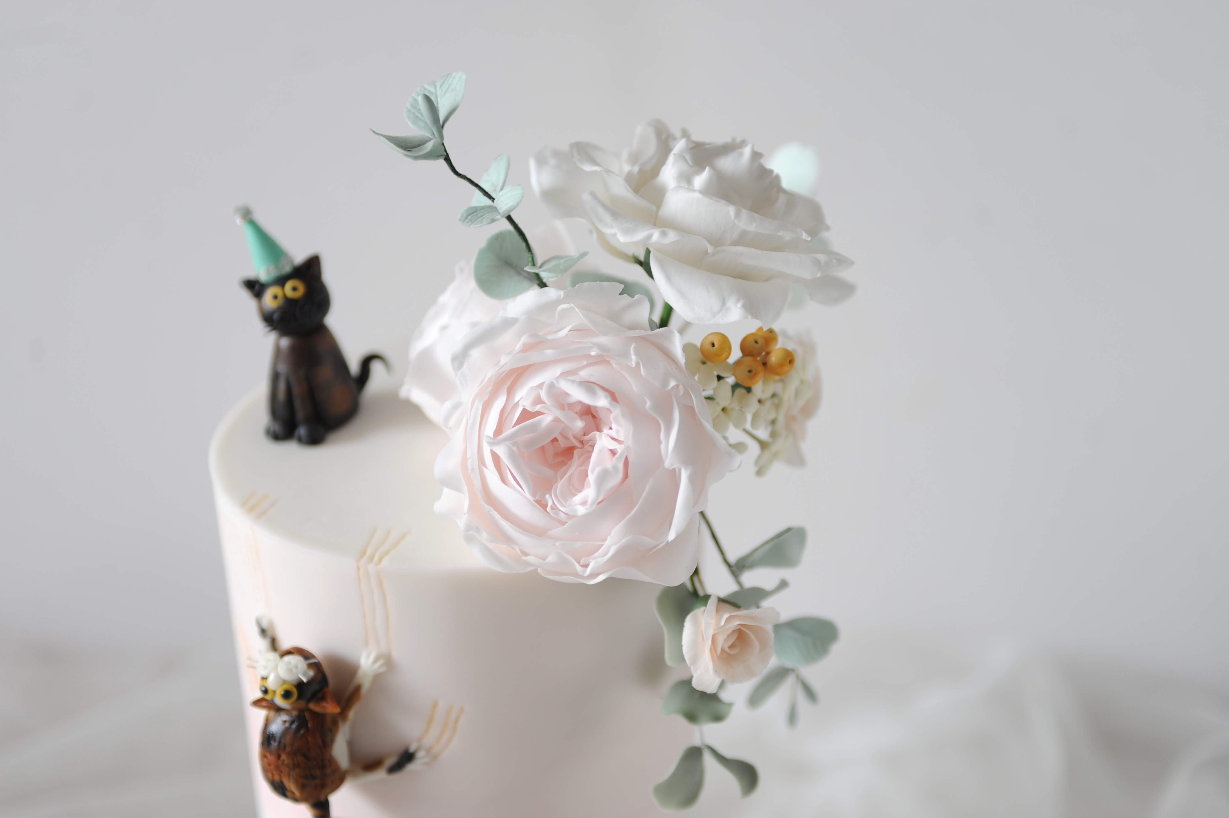 Cats & flowers close up